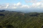 Deforestation in Borneo -- sabah_0913