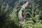 Deforestation in Borneo -- sabah_0946