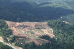Deforestation for oil palm -- sabah_1070