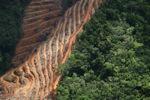 Deforestation for oil palm -- sabah_1148