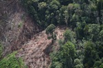 Deforestation for oil palm -- sabah_1199