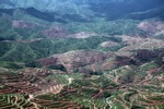 Deforestation for oil palm -- sabah_1208