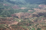 Deforestation for oil palm -- sabah_1210