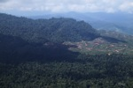 Deforestation for oil palm -- sabah_1220