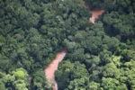 Borneo rainforest river -- sabah_1268