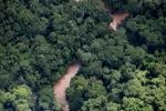 Borneo rainforest river -- sabah_1269