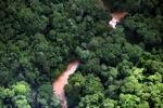 Borneo rainforest river -- sabah_1270