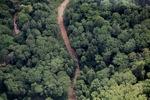 Borneo rainforest river -- sabah_1271