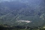 Oil palm plantation -- sabah_1281