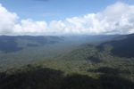 Untouched rain forest -- sabah_1400