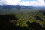 Untouched rain forest in Imbak Canyon, Sabah