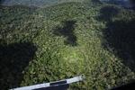 Pristine rainforest in Imbak Canyon, Malaysian Borneo
