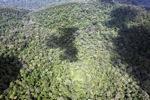 Pristine rainforest in Imbak Canyon, Sabah, Malaysia