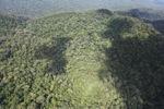 Ancient rain forest in Imbak Canyon, Sabah, Malaysia