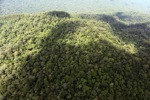 Oldgrowth rainforest in Imbak Canyon, Malaysia