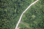 Logging road -- sabah_1471