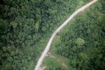Logging road -- sabah_1472