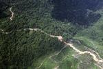Logging road -- sabah_1490