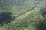 Logging road -- sabah_1498