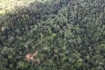 Logging road -- sabah_1504