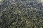 Logging road -- sabah_1506