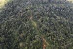 Logging road -- sabah_1508