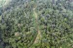 Logging road -- sabah_1509