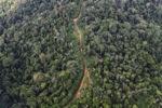Logging road -- sabah_1511