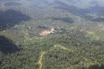 Oil palm plantation -- sabah_1516