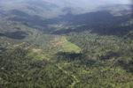 Oil palm plantation -- sabah_1519