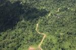 Logging road -- sabah_1522