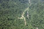 Logging road -- sabah_1526