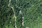 Logging road -- sabah_1527