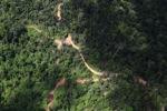 Logging road -- sabah_1537