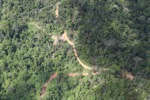 Logging road -- sabah_1538