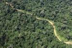 Logging road -- sabah_1547