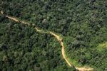 Logging road -- sabah_1549