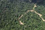 Logging road -- sabah_1551
