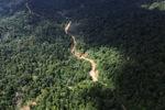 Logging road -- sabah_1554