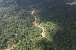 Logging road -- sabah_1555