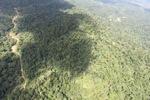 Logging road -- sabah_1557