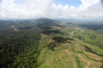 Oil palm plantation -- sabah_1587