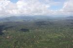Oil palm plantation -- sabah_1604