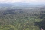 Oil palm plantation -- sabah_1606