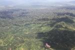 Oil palm plantation -- sabah_1612