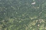 Oil palm plantation -- sabah_1630