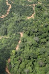 deforestation for oil palm -- sabah_1674