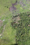 deforestation for oil palm -- sabah_1680