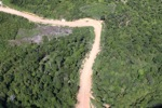 Logging road -- sabah_1683