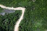 Logging road -- sabah_1686